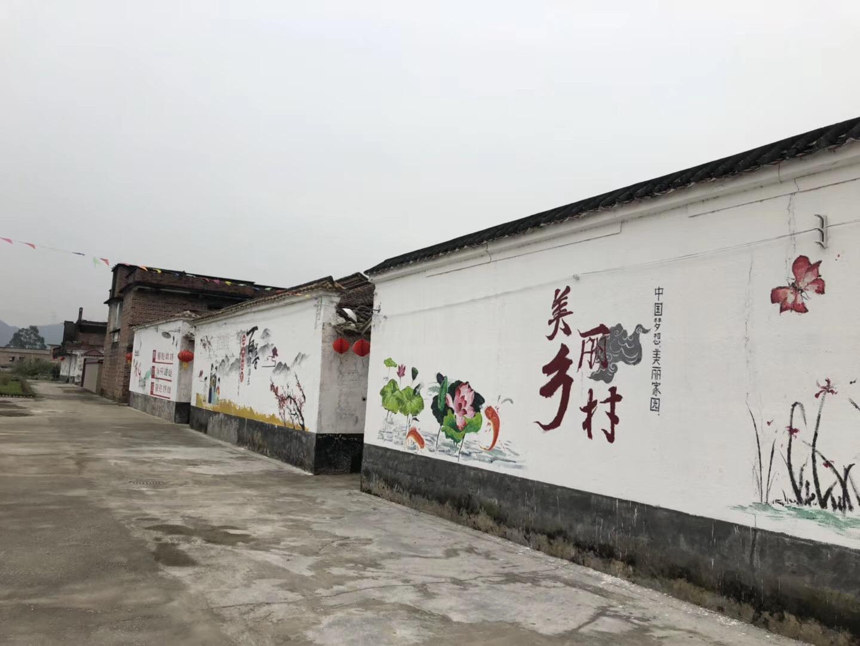广东滴水恩公益党支部走访美丽乡